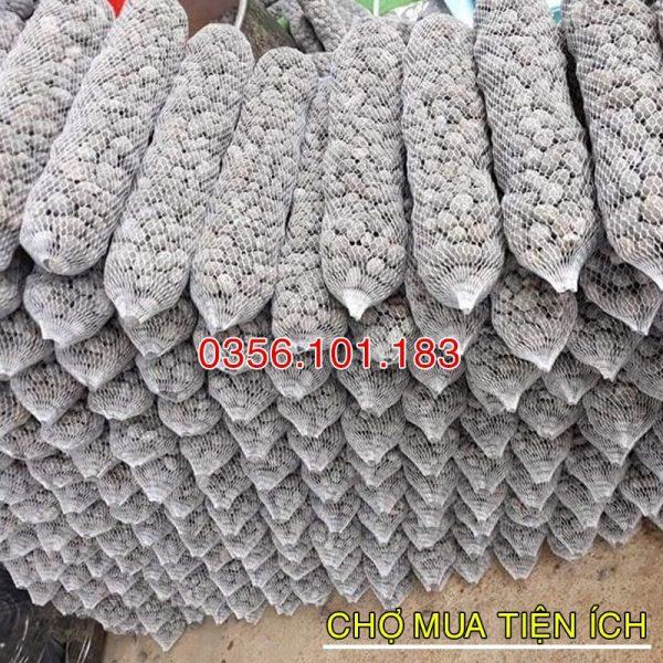 Phân dê túi lưới bón Hoa Lan 20cm